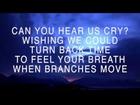 Leigh nash   Lyrics   Mattew West