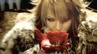 ScReW - Gather Roses -PV-
