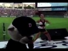 Security Guard Upstages Hot Cheerleaders With  Fresh Dance Moves
